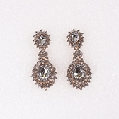 鍍18K金耳環-歐美時尚奢華閃耀女耳飾73ns13【時尚巴黎】