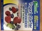 喜又美 DIY 機能優格菌粉 (2G*15包) 6盒 直接食用 優格菌