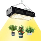 ZSHONORLIGH【日本代購】LED植物成長燈 植物培育燈 完全光譜-500W