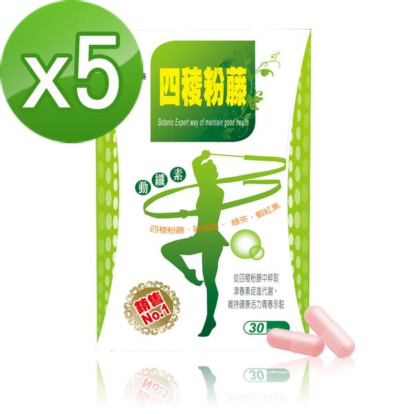 【Realwoman】新一代四稜粉藤動纖素(30粒/盒x5盒)
