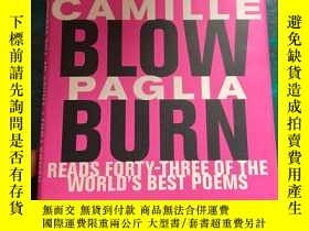 二手書博民逛書店Break罕見Blow Burn: Camille PagliaY204445