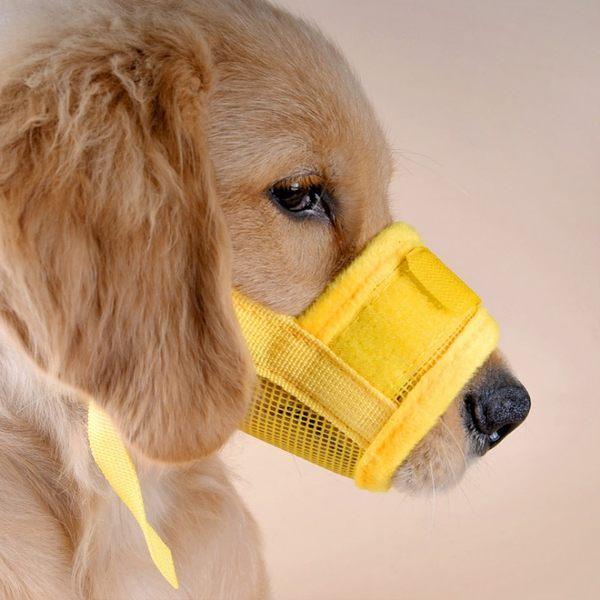 防咬狗嘴套防叫狗狗口罩可調節嘴圍大小中型犬金毛 黛尼時尚精品