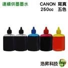 【填充墨水/寫真墨水/五色一組】CANON 250CC  適用所有CANON連續供墨系統印表機機型