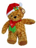 【卡漫城】 聖誕節 玩偶 玫瑰絨 50cm~ 可愛熊 聖誕帽 耶誕 絨毛 娃娃 布偶 禮物 佈置 Xmas Bear