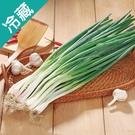 台灣翠綠青蔥1包(200g±5%/包)【愛買冷藏】