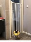 寵物圍欄寵物籠 擋攔防狗狗貓咪門欄柵欄隔離欄桿護欄室內跳自由空間TW【快速出貨八折搶購】