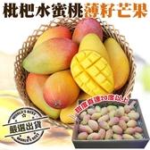 【果之蔬-全省免運】琵琶水蜜桃薄籽芒果5台斤±10%