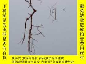 二手書博民逛書店【罕見】2009年 Branches: Nature s Pat