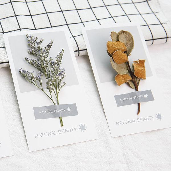 【03743】乾燥枝葉卡片 乾燥花 手工 生日 賀卡 小卡