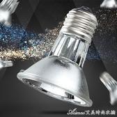 RS爬蟲太陽燈曬背燈龜缸半水龜兩棲UVA UVB3.0全光譜鹵素燈 交換禮物