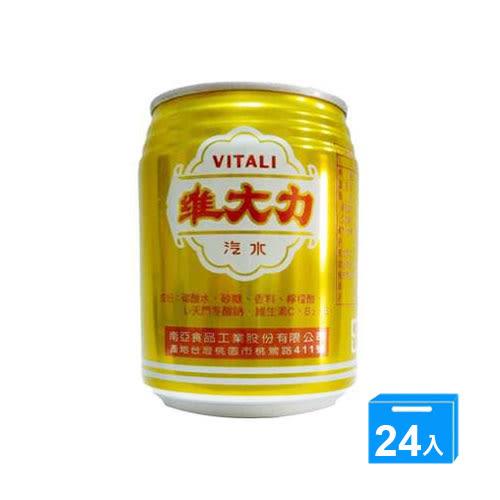 維大力汽水易開罐255ml*24入【愛買】