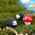 CARMO刺蝟+蘑菇多肉微景觀(3件組) 暖心【A018007】