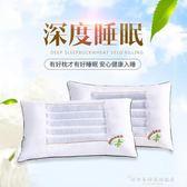 一對裝決明子枕頭單人雙人枕芯家用蕎麥護頸忱頭男整頭成人帶枕套CY『韓女王』