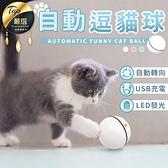 現貨!自動逗貓球 自動寵物玩具球 LED USB充電 發光 寵物 電動 逗貓球 貓玩具 貓咪用品 #捕夢網