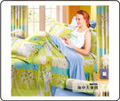 {{海中天休閒傢俱廣場 }} C-12 摩登時尚 床罩系列 233-2 雙人床罩(淺綠)