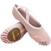 瑜伽鞋 成人舞蹈鞋女軟底夏季網布瑜珈體操民族舞跳舞鞋芭蕾舞練功鞋