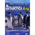 南極DVD...