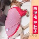 狗狗衣服金毛拉布拉多寵物薩摩耶秋裝大狗中型大型犬秋季薄款秋冬 衣櫥秘密