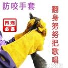 寵物防咬手套防寵物鬆鼠大眼飛鼠蜜袋鼯土撥鼠倉鼠貓刺猬蛇狗防抓防咬手套加厚3C公社