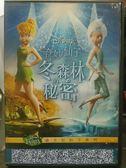 挖寶二手片-P01-149-正版DVD-動畫【奇妙仙子 冬森林的秘密】-迪士尼