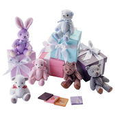 【Diva Life】禮物熊禮盒 4入 10盒裝(比利時純巧克力)