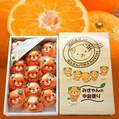 【果之蔬-全省免運】日本中島蜜柑禮盒原裝盒【1kg±10%/約12-15入】