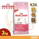 FHN皇家K36幼母貓2kg【寶羅寵品】