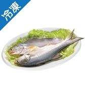 午仔魚一夜干170-200g/尾【愛買冷凍】