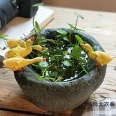 創意水培植物花盆多肉花器仿石臼盆栽裝飾【時尚大衣櫥】