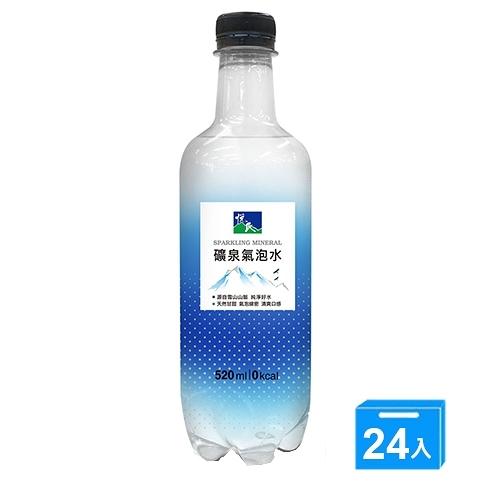 悅氏礦泉氣泡水520mlx24【愛買】