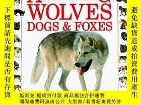 二手書博民逛書店Amazing罕見Wolves, Dogs & Foxes (Eyewitness Junior)-令人驚異的狼、