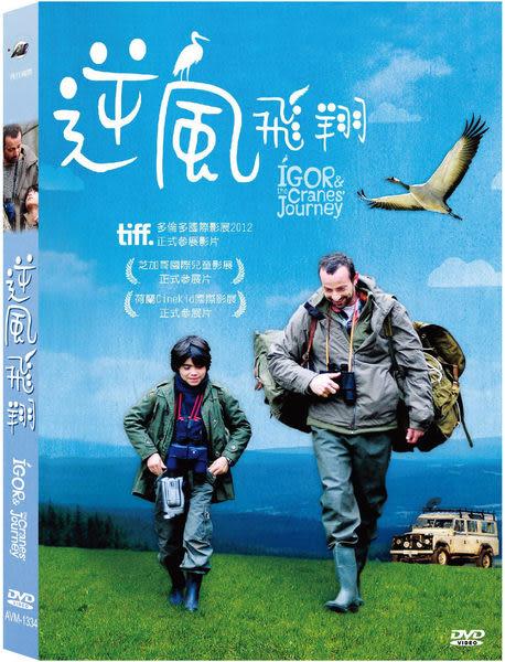 逆風飛翔 DVD IGOR & the Cranes' Journey (音樂影片購)