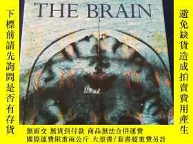 二手書博民逛書店A罕見Portrait Of The Brain一幅大腦的肖像【