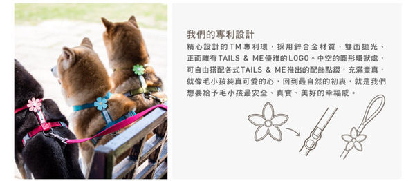 *WANG*台灣製TAILS&ME 尾巴與我《自然概念革-純粹系列項圈》S號賣場
