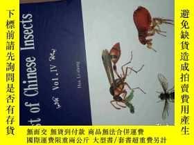 二手書博民逛書店中國昆蟲名錄罕見IV 英文List of Chinese ins