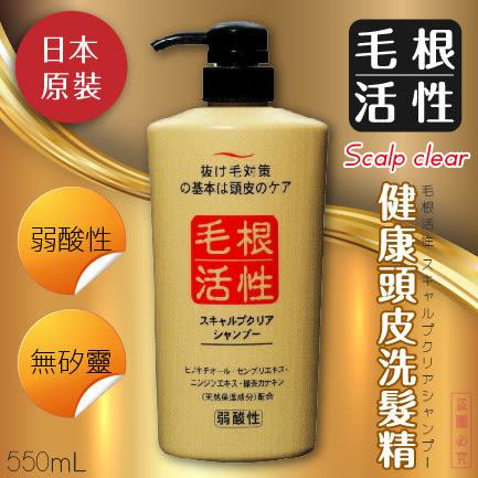 日本【純藥】囊活化(毛根活性)頭皮護理洗髮精