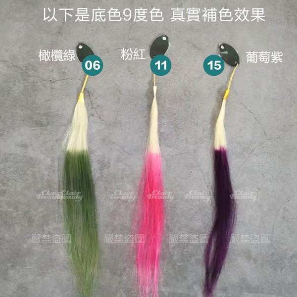 500ML大容量 韓國補色護色洗髮精 增色 鎖色 洗髮染 增艷 泡泡染 【LP18】護髮染 補色染