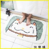 地墊 臥室毛絨地毯墊子衛浴可手洗門墊