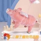 狗狗發泄玩具耐咬寵物犬陪睡豬伴侶泰迪磨牙【小獅子】