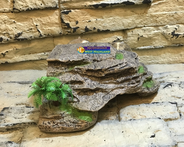 【西高地水族坊】造境擺設 兩棲爬蟲 仿真岩石水龜浮台 曬台 平台(烏龜島)18*16*7.5cm(附吸盤)