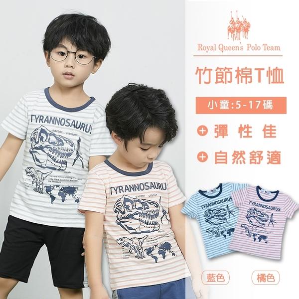 竹節棉恐龍圖T