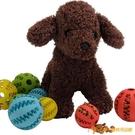 2個裝 西瓜牙齒球寵物狗漏食玩具球耐咬潔齒磨牙球寵物橡膠球【小獅子】
