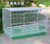 鳥籠金屬鳥籠鴿子相思鳥籠子鸚鵡籠兔子籠通用鳥籠群籠繁殖籠   汪喵百貨