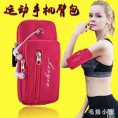 健身手機臂包跑步夏季男士透氣運動防水女款可愛臂套腕包式用 ys5500『毛菇小象』
