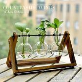 創意水培綠蘿植物透明玻璃容器簡約現代小清新花瓶客廳擺件裝飾品『新佰數位屋』