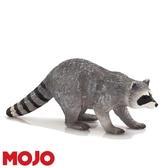 【Mojo Fun 動物星球頻道 獨家授權】 浣熊 387159