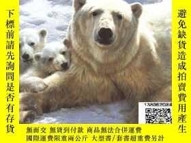 二手書博民逛書店【罕見】Wildlife the Nature Painting
