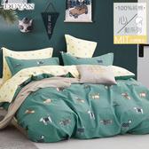 《DUYAN竹漾》100%精梳純棉雙人加大床包被套四件組-踏青日