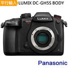 Panasonic LUMIX DC-GH5S 單機身*(中文平輸)