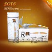 ZGTS 無縫微針滾輪 192鈦合金針臉部美容院MTS  『魔法鞋櫃』